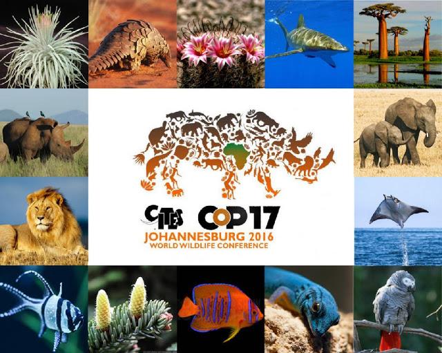 CITES-Image