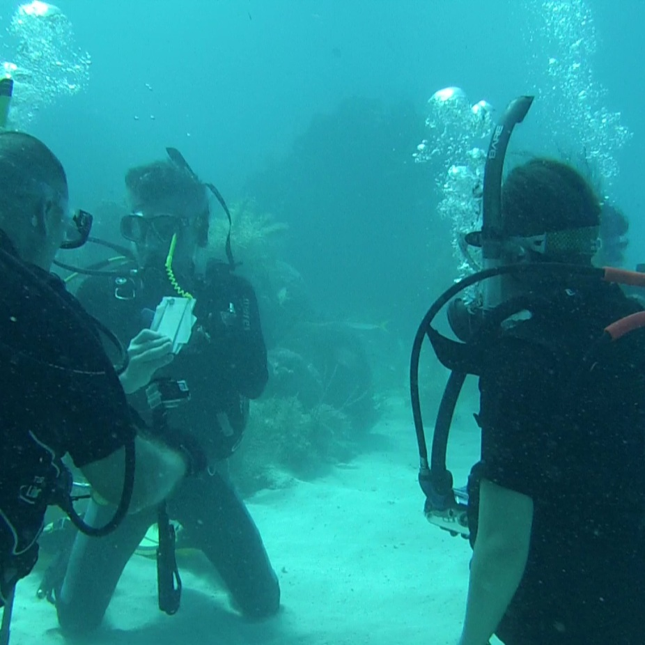 underwater class session